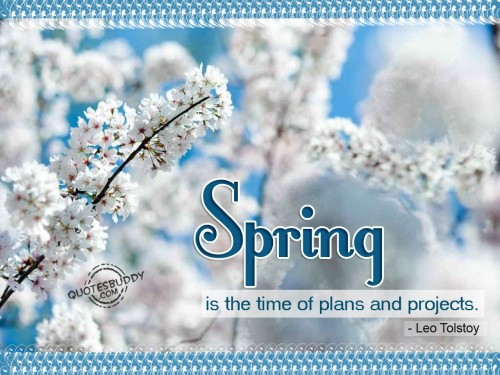 Spring-Is-The-Time-Of-Plans-And-Projects